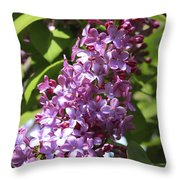 Lovely Lilacs Throw Pillow