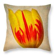 Lovely Textured Tulip Throw Pillow