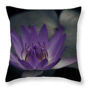 Loves Secret Throw Pillow