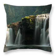 Lower Lewis Falls Throw Pillow by Blanca Braun