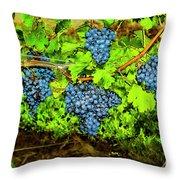 Lucious Grapes Throw Pillow