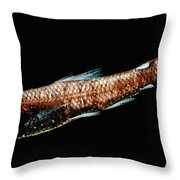Luminous Lanternfish Throw Pillow
