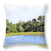 M R Ducks Throw Pillow