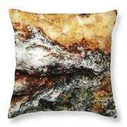 Macro Rock Throw Pillow