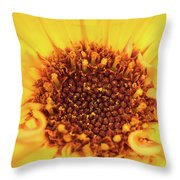 Macro Shot Of A Yellow Flower. Throw Pillow