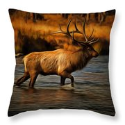 Madison Bull Throw Pillow