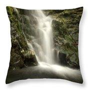 Madison Falls 2 Throw Pillow