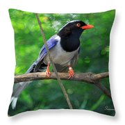 Magpie II Throw Pillow