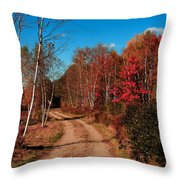Maine October Throw Pillow