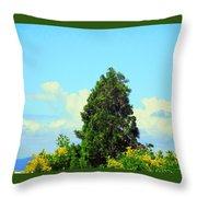 Majestic Evergreen Throw Pillow