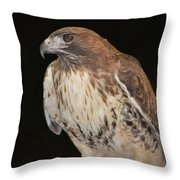 Majestic Hawk Throw Pillow