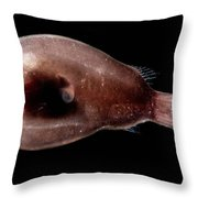 Male Anglerfish Throw Pillow