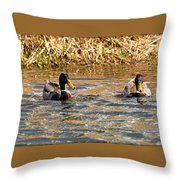 Mallards On Pond Throw Pillow