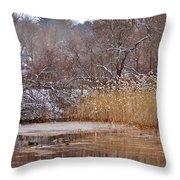 Mallards Throw Pillow