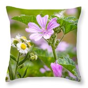 Malva And Chamomile In The Meadow Throw Pillow