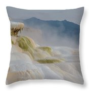 Mammoth Beauty Throw Pillow