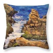 Marginal Inlet Throw Pillow