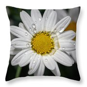 Marguerite Daisy Throw Pillow