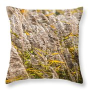 Marshes 2 Throw Pillow