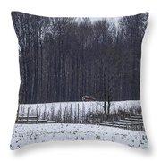 Martin Fruit Farm Throw Pillow