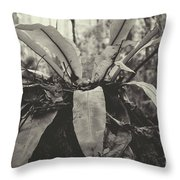Mary Cairn Cross Reserve Throw Pillow