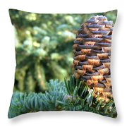 Masterful Construction - Spruce Cone Throw Pillow