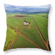 Maui Sugar Cane Throw Pillow