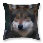 Mexican Grey Wolf Da Throw Pillow