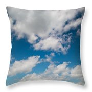 Midwest Corn Field Throw Pillow