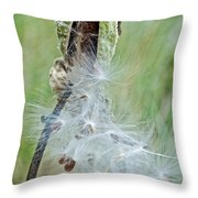 Milkweed Pod On Trail To North Beach Park In Ottawa County, Michigan Throw Pillow