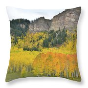 Million Dollar Highway Aspens Throw Pillow