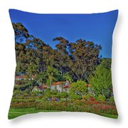 Mission Historical Park Throw Pillow