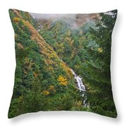 Misty Forest Turkey  Throw Pillow