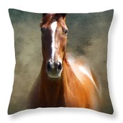 Misty In The Moonlight P D P Throw Pillow