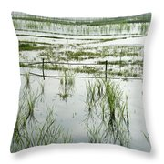 Misty Morning In China Throw Pillow