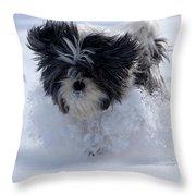 Misty Runs Through The Snow Throw Pillow