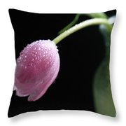 Misty Throw Pillow by Tracy Hall