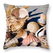 Mix Group Of Seashells Throw Pillow