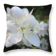 Mock Orange Blossoms Throw Pillow