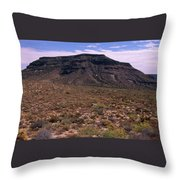 Mojave National Preserve Throw Pillow