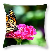 Monarch Butterfly On Pink Flower Throw Pillow