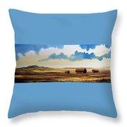 Montana Landscape Throw Pillow