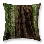 Montgomery Woods State Natural Reserve Throw Pillow