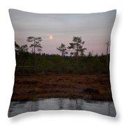 Moon Over Wetlands Throw Pillow