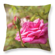 Moondrops 85 Hybrid Tea Rose, Pink Rose Originally Produced By  Throw Pillow