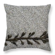 More Seaweed Throw Pillow