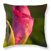 Morning Dew Throw Pillow