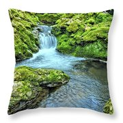 Mossy Moine Falls Throw Pillow