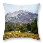 Mountains In The Background X Throw Pillow