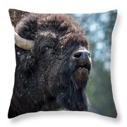 Mr. Funny Face Throw Pillow